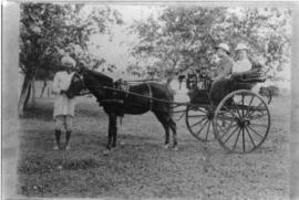 Missionary Friesens in a horse-drawn carriage