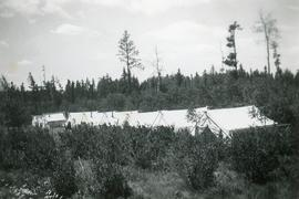 A row of large tents in the forest
