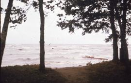 Waves at Camp Arnes