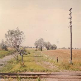 Railway tracks in Tiegenhagen, Poland