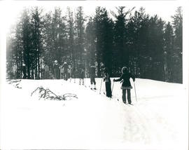 Cross-country skiing by youth