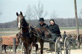 Old Order Mennonite couple with horse and buggy,