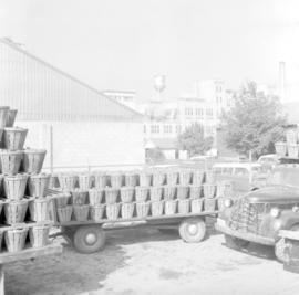 Bushel baskets of tomatoes in Leamington, Ontario