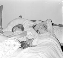 Two children sleeping on a bed with a cat in