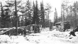 Wood piles at Mile 10 Camp, Chalk River, Ontario