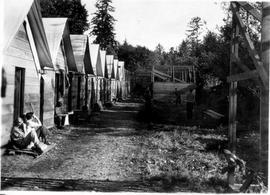 Cabins at the Seymour Camp