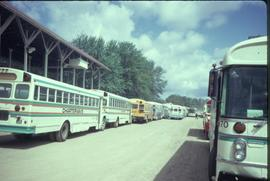 Busses bringing people to the Ontario Mennonite Relief Sale, 1974