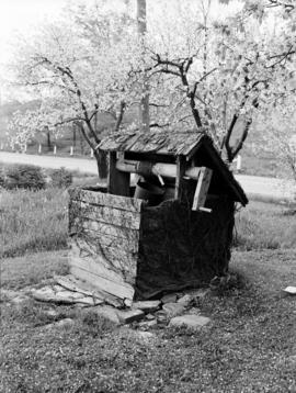 Water well near Grimsby, Ontario. May 1950.