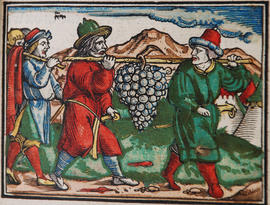 Illustration from 1531 Froschauer Bible held in