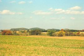 Farmland in Wilmot Twp.