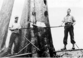 L-R: Charles Shorten and Charles Chambers sawing