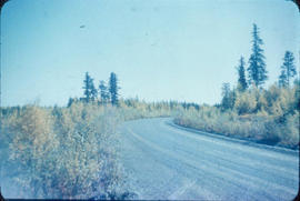 Road to the Clearwater Lake Sanatorium