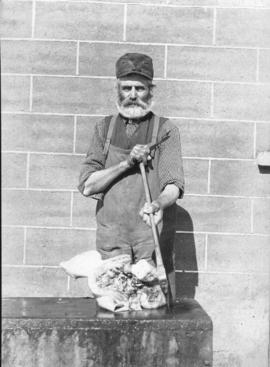 """Father butchering head of pig, April 3, 1912"""