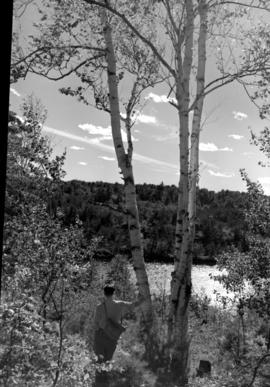 A man leaning on a tree, looking out at the river