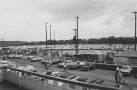 Cars parked at the Relief Sale