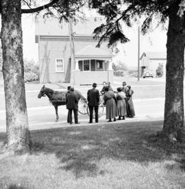A group of Old Order Mennonites standing beside a horse and buggy