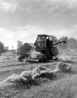 Threshing with self-propelled harvester