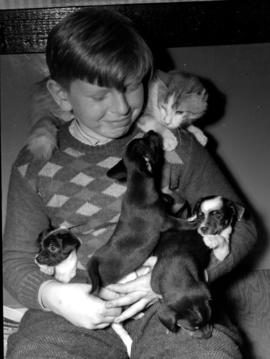 Morris Sauder with pups and a cat