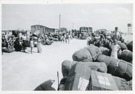 Supplies arriving in refugee camp, Egypt