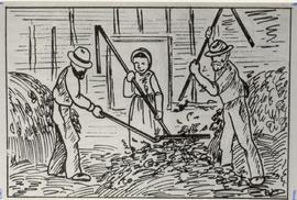 Threshing grain with flail