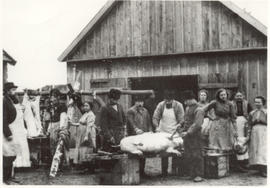 Pig butchering, Russia