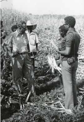 Inspecting a crop