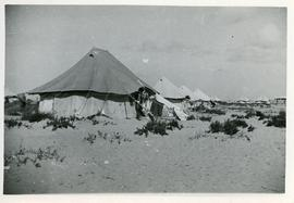 Tent in a refugee camp, Egypt