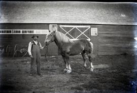 A man from 42.4 with horse before barn.