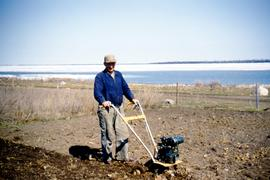 Cultivating the garden on Matheson Island