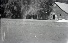 Outdoor, blurry photo of barn, yard, trees.
