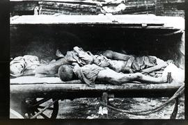 Effects of the 1921 famine in Ukraine