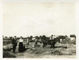 Hofers - Threshing scene - Molotschna Colony