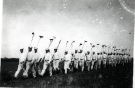 Men in the forestry service
