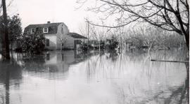 Yuba City flood, 1956