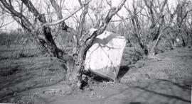 Mattress left behind by Yuba City flood, 1956