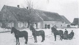 Two people in sled drawn by three horses