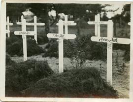 Graves with white crosses